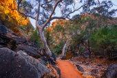 Photo Aussie Adventure
