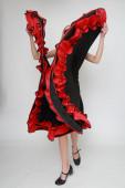 Photo Studio image of flamenco dancer