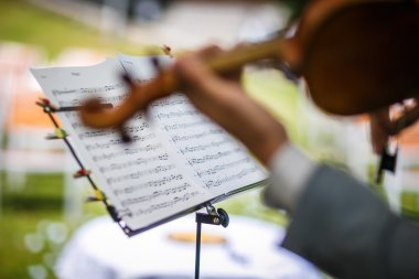 Male violinist playing his instrument and reading a music sheet