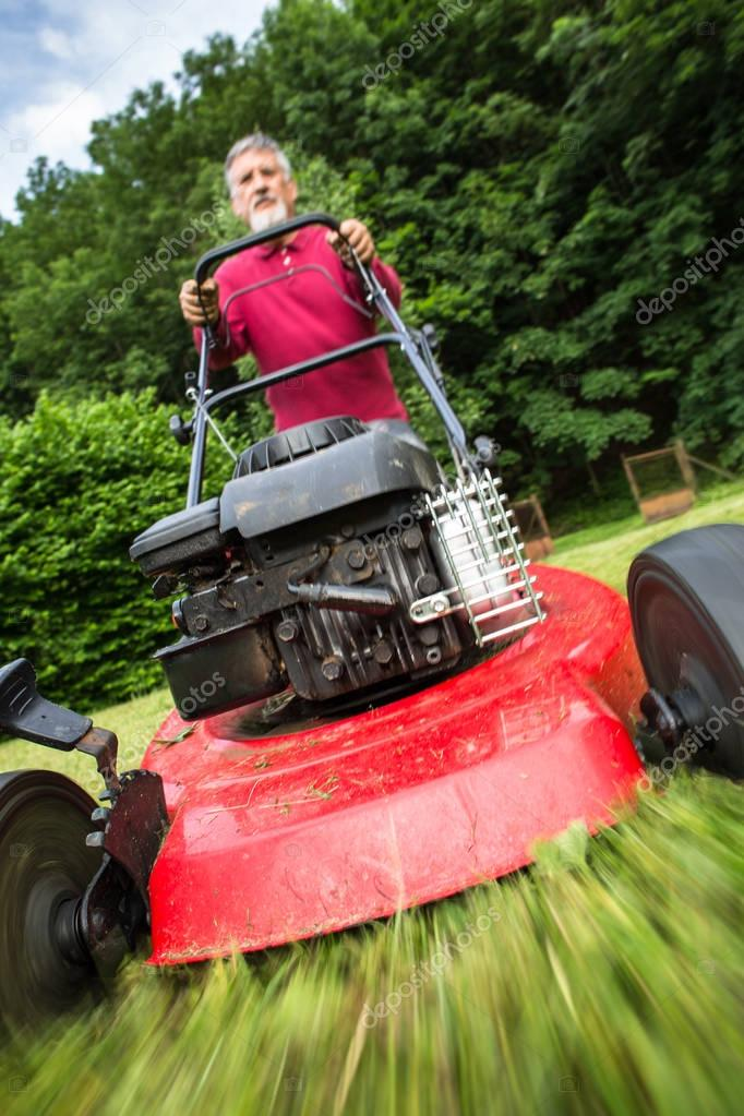 Senior man mowing the lawn in his garden (selective focus; shall