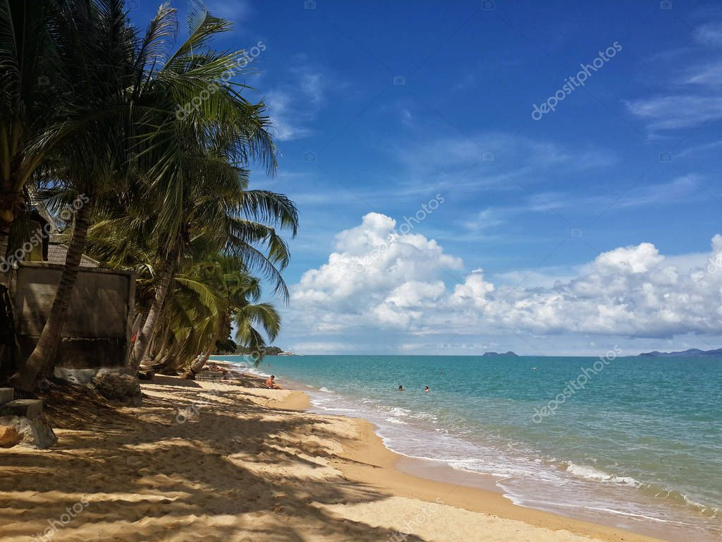 The sandy shores of the azure sea. Waves and palm trees. Koh Samui, Thailand