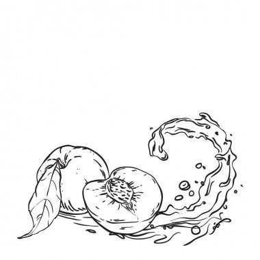 Peaches on wave juice. hand drawn sketch illustration