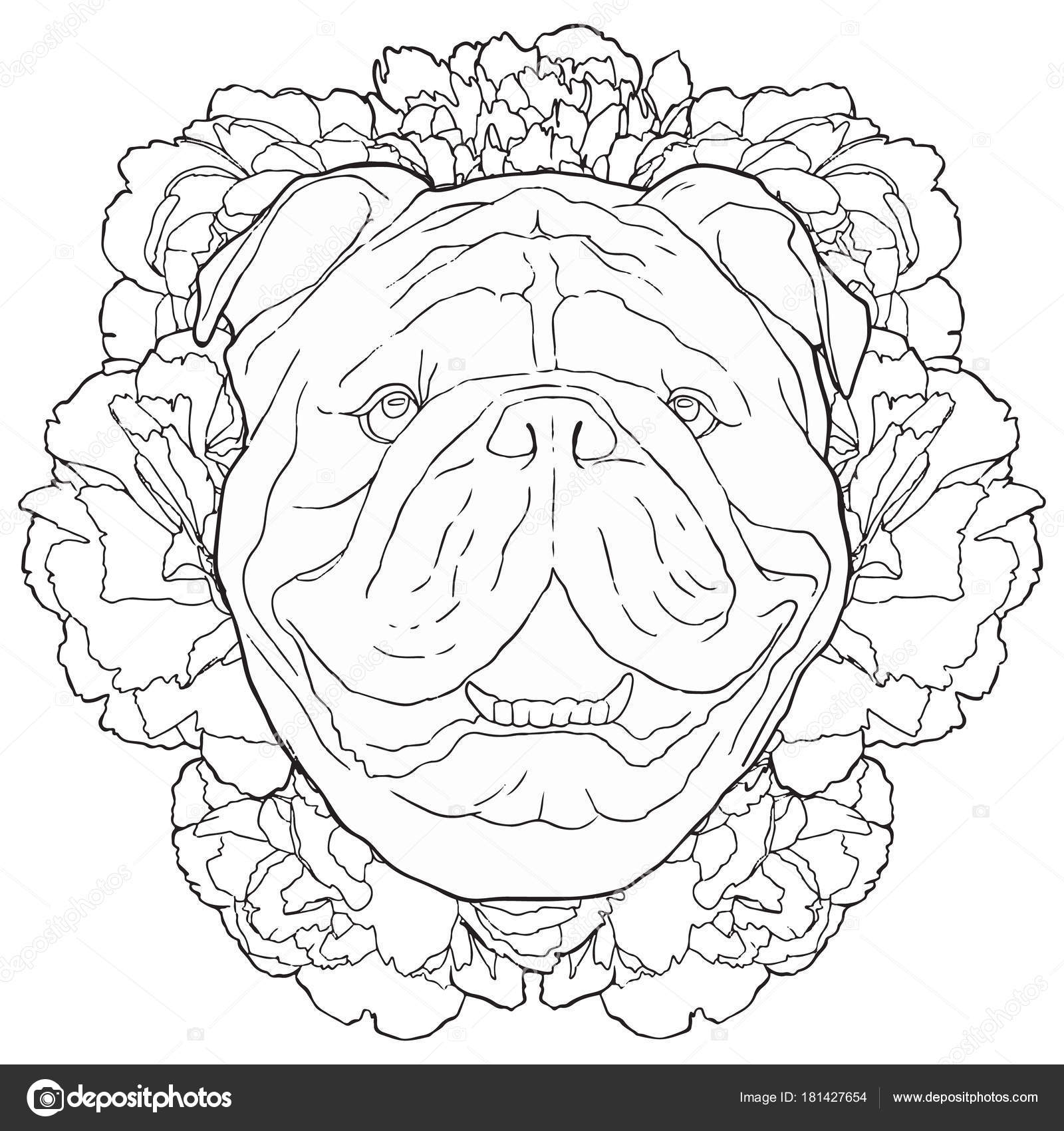 Imágenes: cara de perro para colorear | Dibujo de contorno negro
