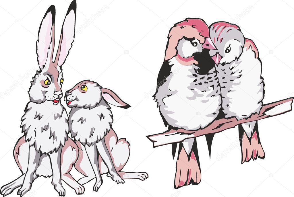 Desenhos Animados Lebre E Passarinho Casais Apaixonados Vetor De