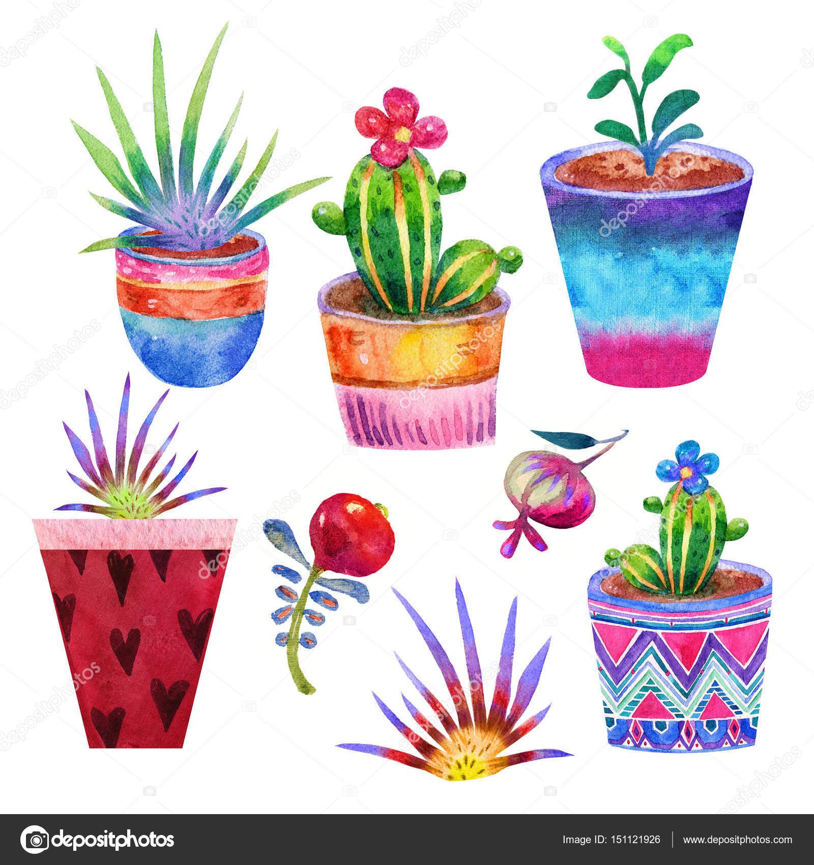 Dibujos de macetas con flores finest maceta de flores for Imagenes de plantas en macetas