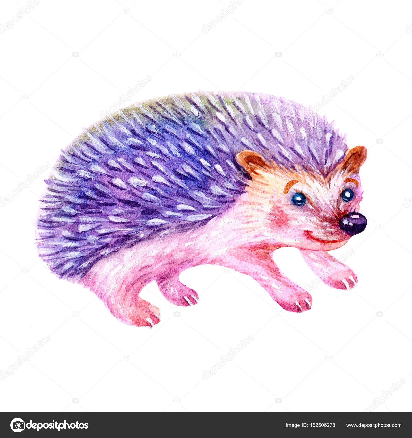 Cute Watercolor Cartoon Hedgehog Illustration Isolated On White BackgroundHand Painted Greeting Card With Animal ElementVintage