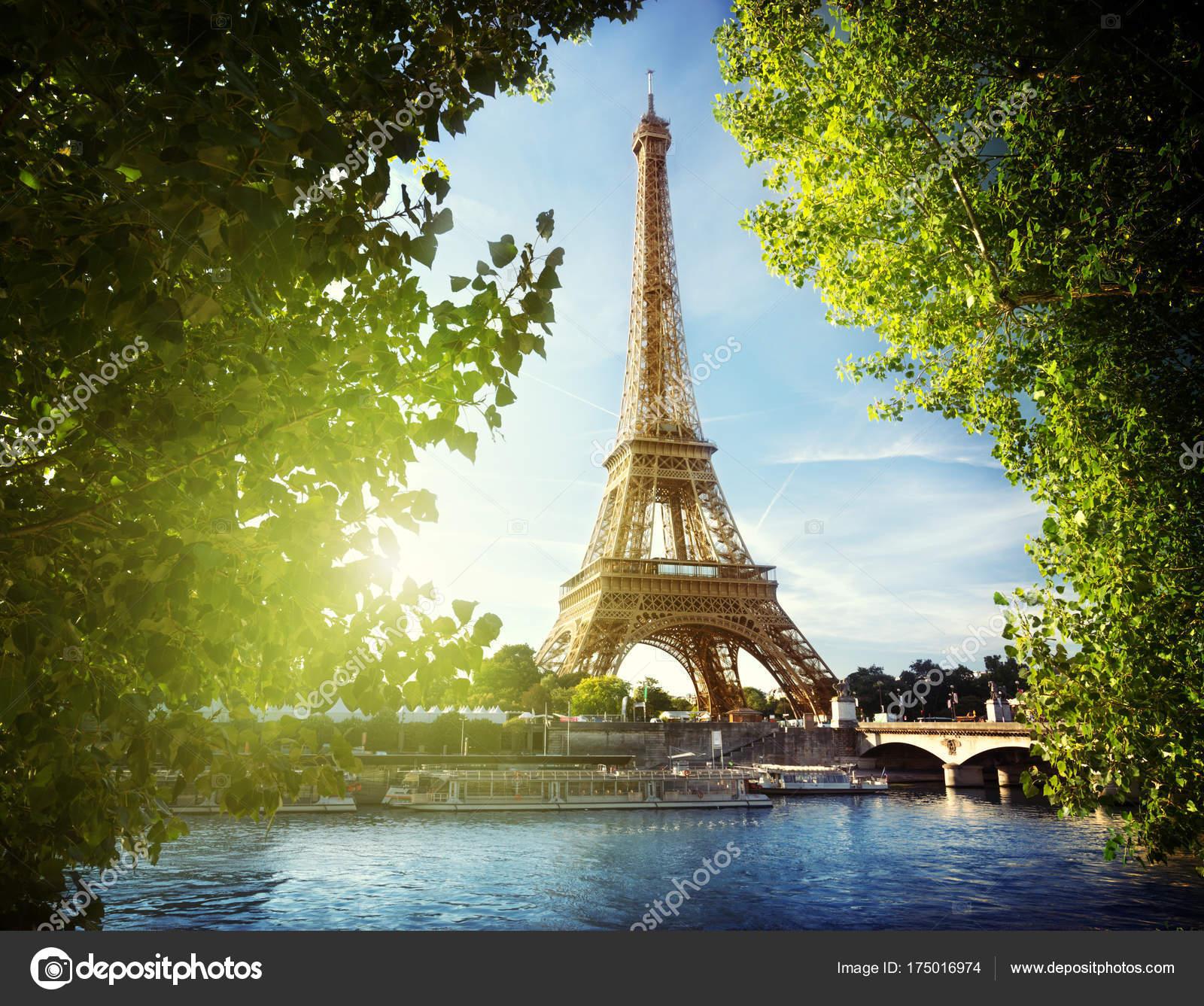 eiffelturm in paris frankreich stockfoto iakov 175016974. Black Bedroom Furniture Sets. Home Design Ideas