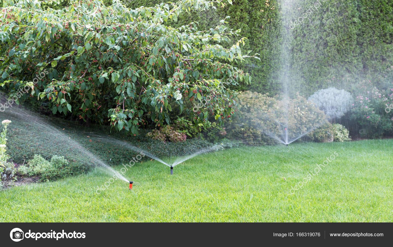 Irrigation du jardin avec arrosage automatique — Photographie ...