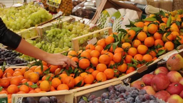 Trh ovoce a zeleniny