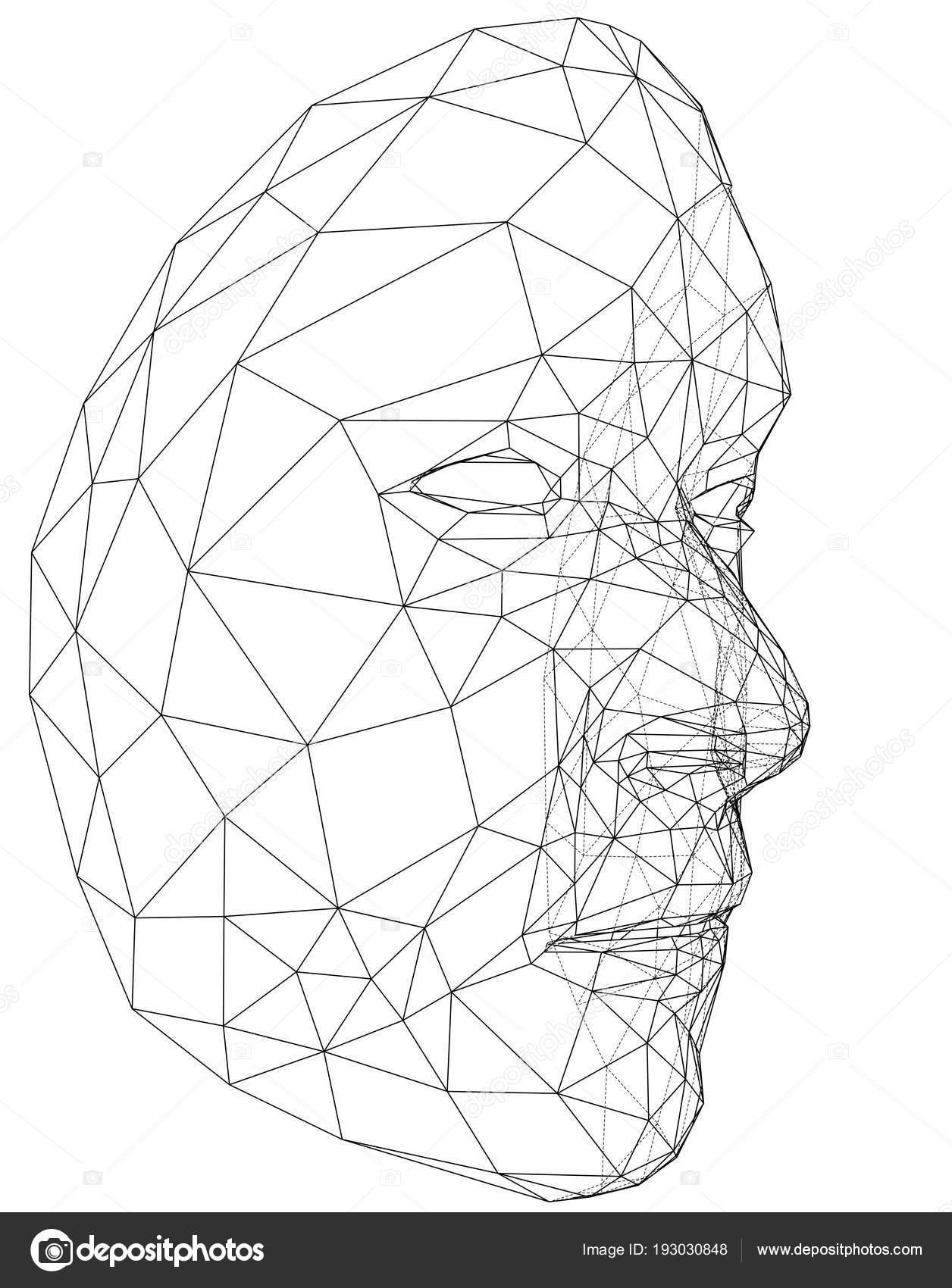 Rostro humano abstracto de marco de alambre — Vector de stock ...