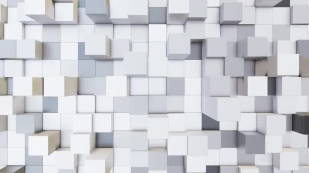 Abstract loopable video background with cubes