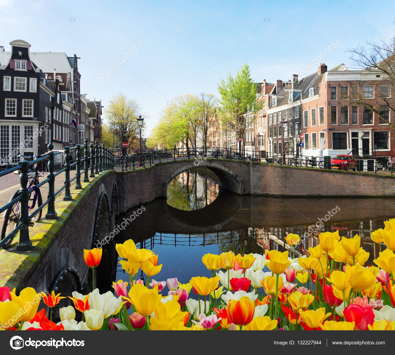 Espace personnel de Mokum. Depositphotos_132227944-stockafbeelding-huizen-van-amsterdam-nederland