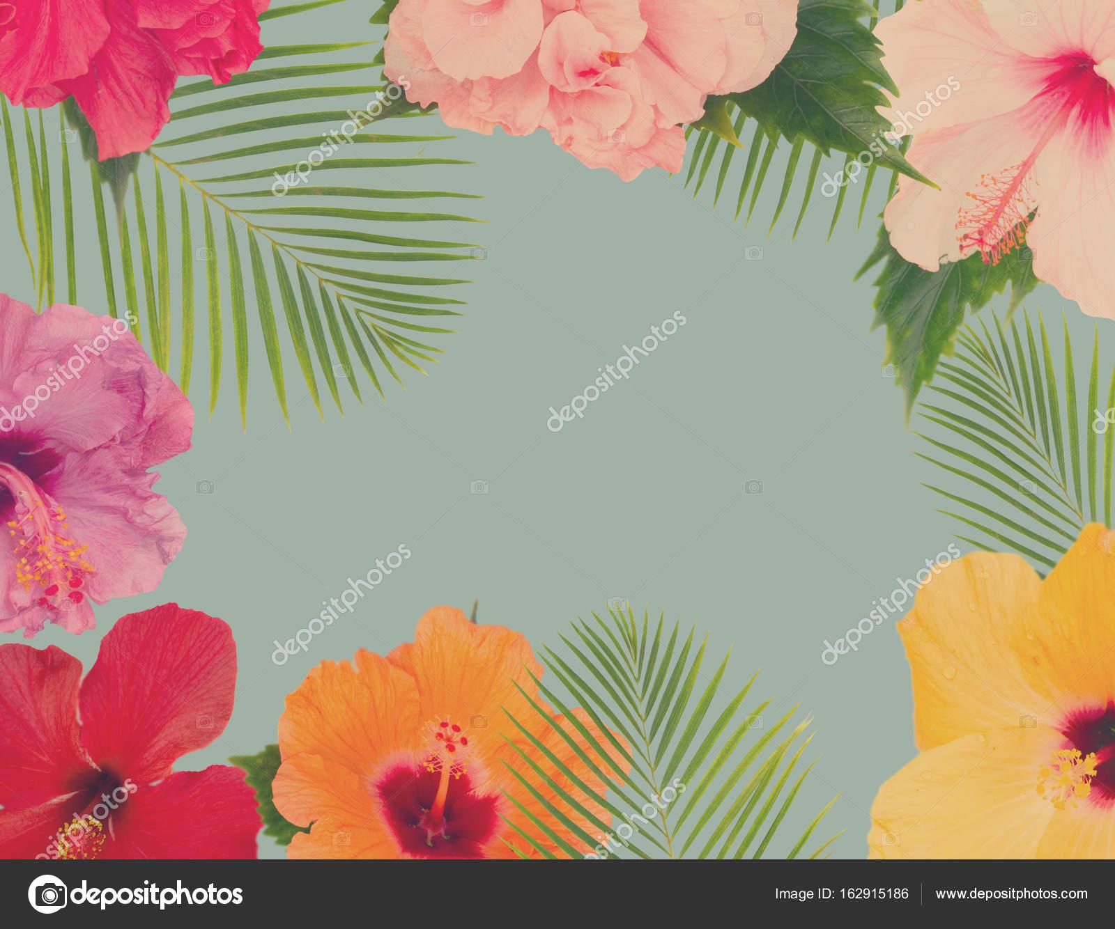 Orange Hibiscus Flower Stock Photo Neirfys 162915186