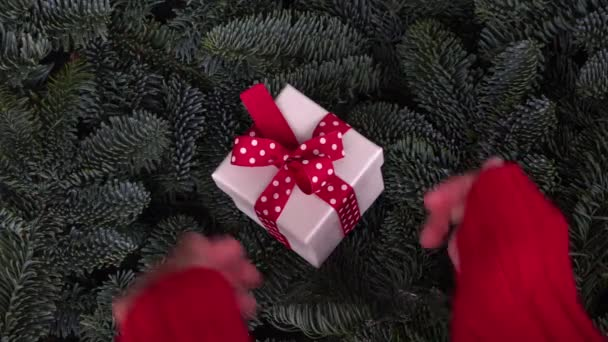 Vánoční dar dávat