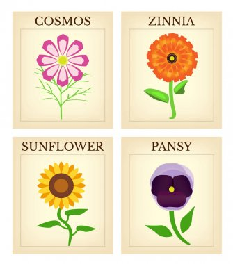 Flower Seed packets - Set of four vintage flower seed packets including cosmos, zinnia, pansy and sunflower