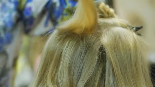 Blonde in a hairdressing salon after coloring hair makes styling. Professional stylist hairdresser master