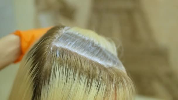 The hair stylist makes hair coloring, blonde, dyes the roots of the ...