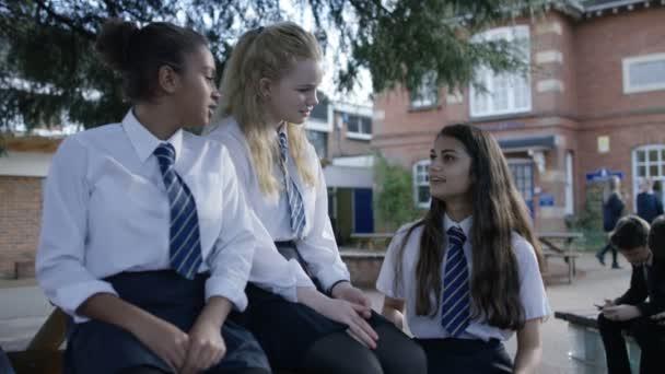 School girls chatting in school playground