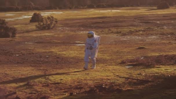 Astronaut walking in woodland area