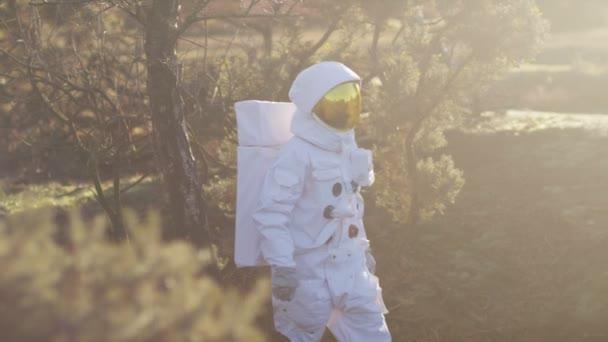 Űrhajós walking erdős területen