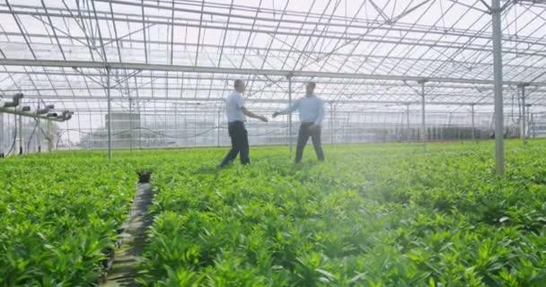 Podnikatelé potřást rukou ve skleníku