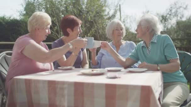 senior friends chatting in the garden