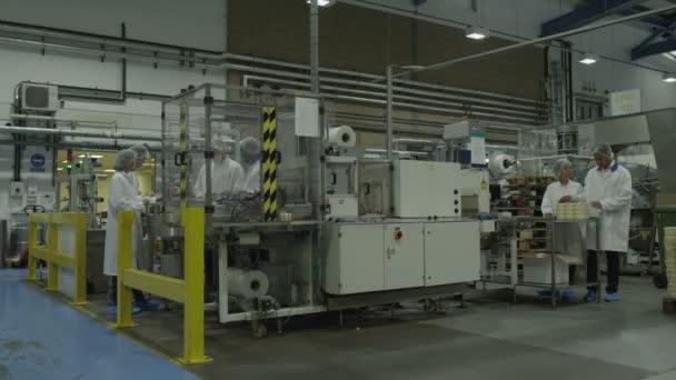 Zaměstnanci provozu výrobních strojů