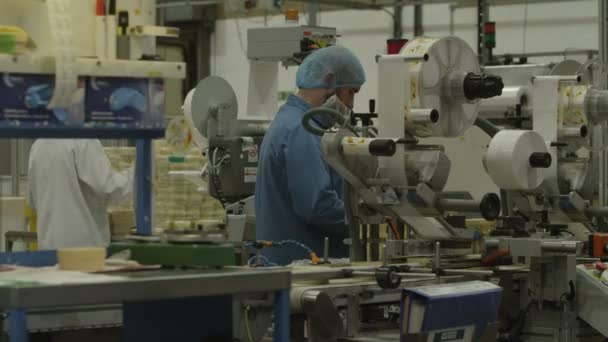 Workers operate machinery in factory