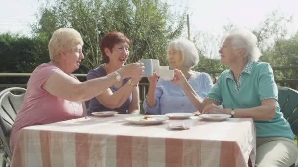 senior friends chatting  with cups of tea