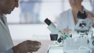 Medical researchers working in the lab analyzing samples and discussing