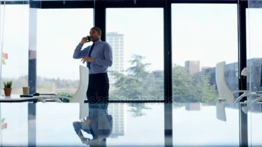 4K Annoyed businessman talking on phone in front of window in his office