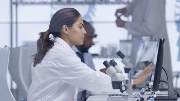 Investigador Médico Mirando Portaobjetos Microscopio Trabajo Equipo ...