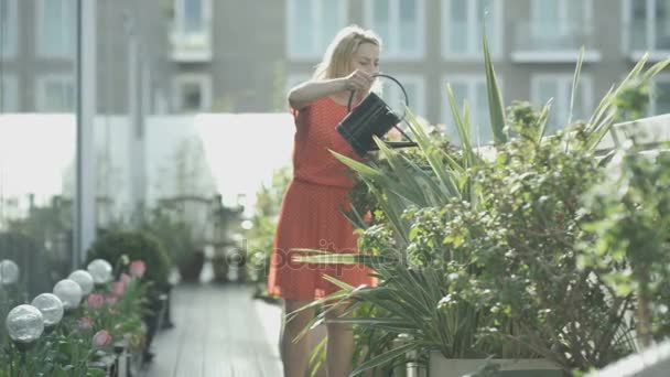4K Woman watering plants and looking out at the view in city rooftop garden