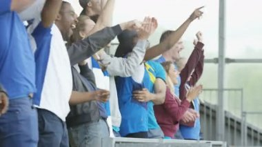 4K Excited sports fans at live event clapping and cheering for their team