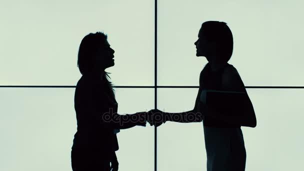 4K Silhouette of businesswomen shaking hands talking on bright background