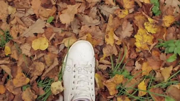 Ženské nohy, chůze na podzimní listí