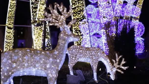 Vánoční jelenů novoroční noc výzdobou atmosféry