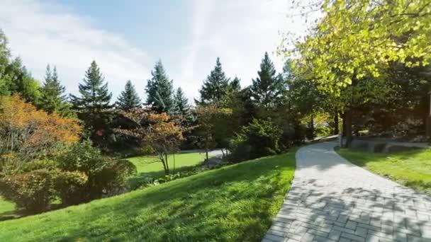 Park backyard area