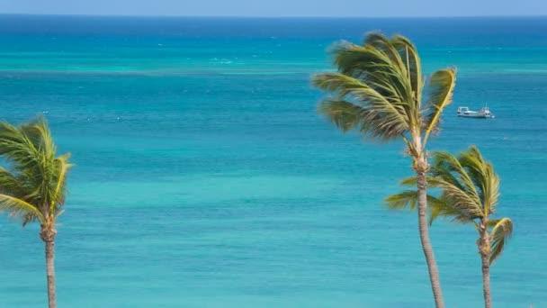 Karibské moře na pozadí