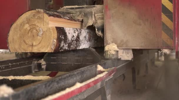 View of sawing logs on timber mill, close-up