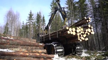Truck loader crane arm lifts up lumber wooden waste — Stock