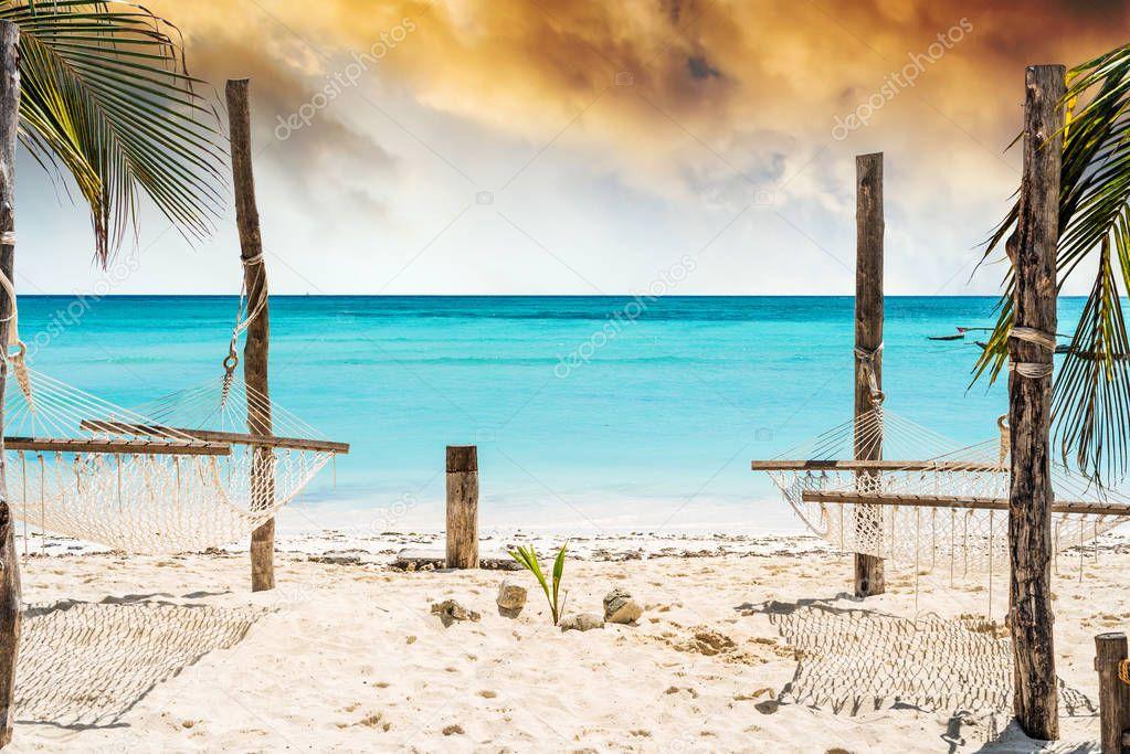 palm and hammock on Zanzibar beach with blue sky and ocean on the background