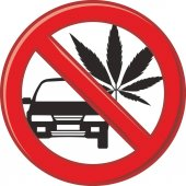 Fotografie No drug for driving