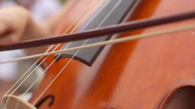 Ladys Hand Playing the Cello