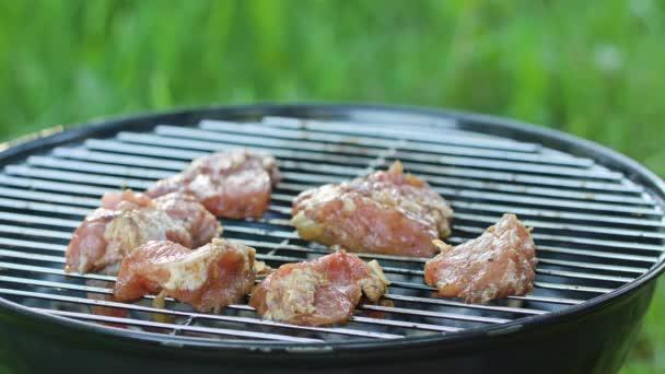 Barbecue gril. Grilování kuřecích řízků