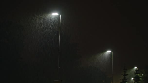 Rainy Street at Night. Row of Lampposts.