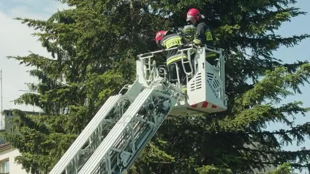 Hasiči připravují smrkové větve