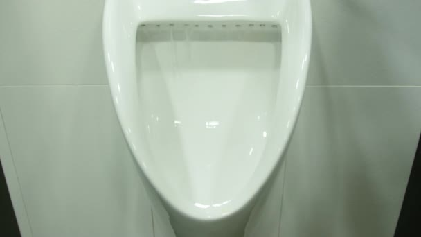 A Uinal in Mens Public Toilet
