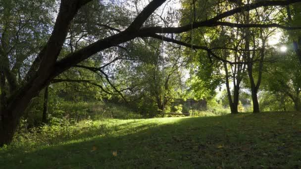 Egy lány a lovaglás, a swing a parkban.