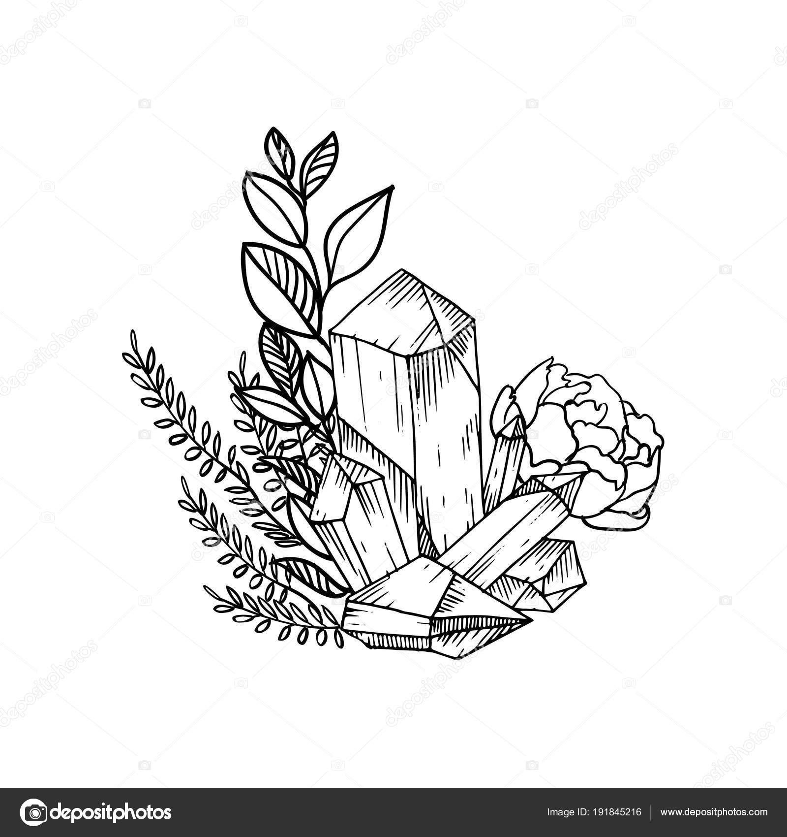 Marco floral vector dibujado a mano con hojas, flores, plumas y ...